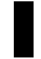 agave17-323794-1