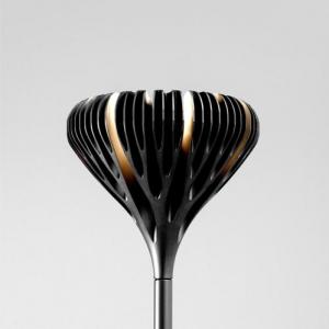 florensis--noir